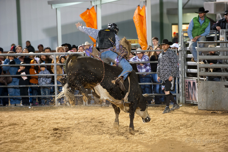 20120225-Katy_Rodeo_2-25-12_Sat-0425