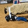 20120225-Katy_Rodeo_2-25-12_Sat-0378