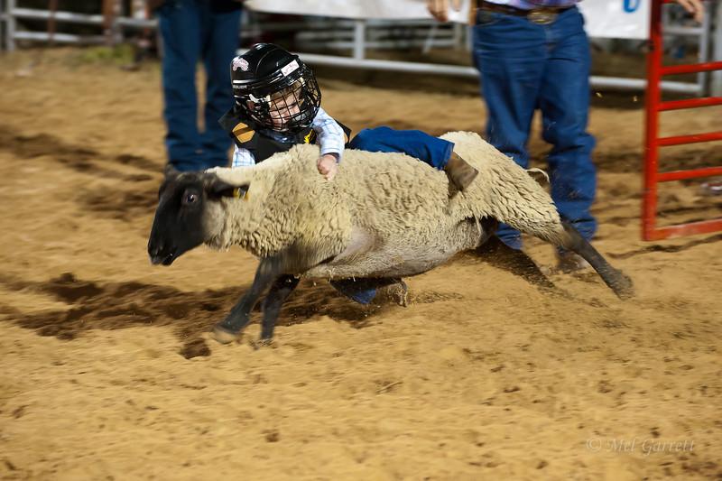 20120225-Katy_Rodeo_2-25-12_Sat-0276