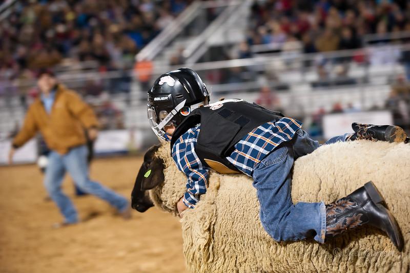 20120225-Katy_Rodeo_2-25-12_Sat-0386