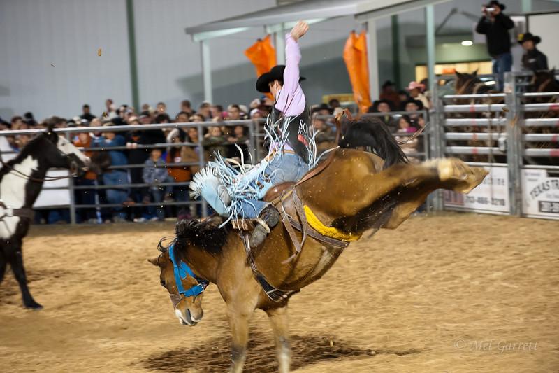 20120225-Katy_Rodeo_2-25-12_Sat-0361