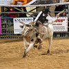 20120225-Katy_Rodeo_2-25-12_Sat-0623