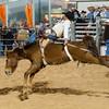20120225-Katy_Rodeo_2-25-12_Sat-0078