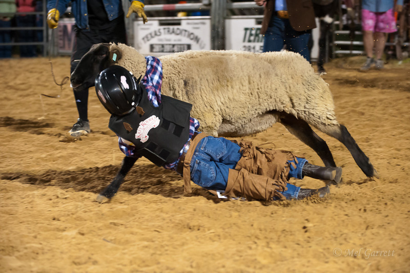 20120225-Katy_Rodeo_2-25-12_Sat-0242