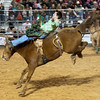 20120225-Katy_Rodeo_2-25-12_Sat-0026