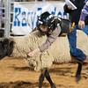 20120225-Katy_Rodeo_2-25-12_Sat-0393