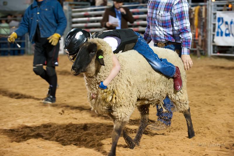 20120225-Katy_Rodeo_2-25-12_Sat-0294