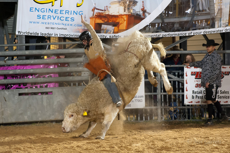 20120225-Katy_Rodeo_2-25-12_Sat-0606