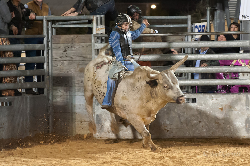 20120225-Katy_Rodeo_2-25-12_Sat-0600