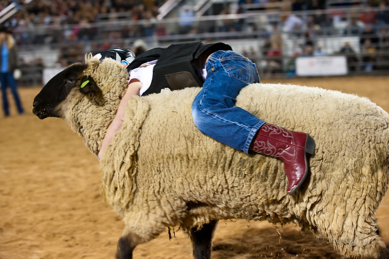 20120225-Katy_Rodeo_2-25-12_Sat-0296