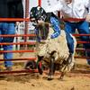 20120225-Katy_Rodeo_2-25-12_Sat-0263