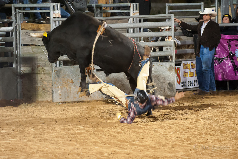 20120225-Katy_Rodeo_2-25-12_Sat-0599
