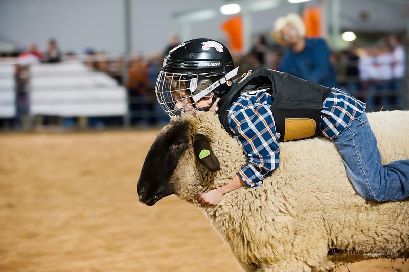 20120225-Katy_Rodeo_2-25-12_Sat-0384