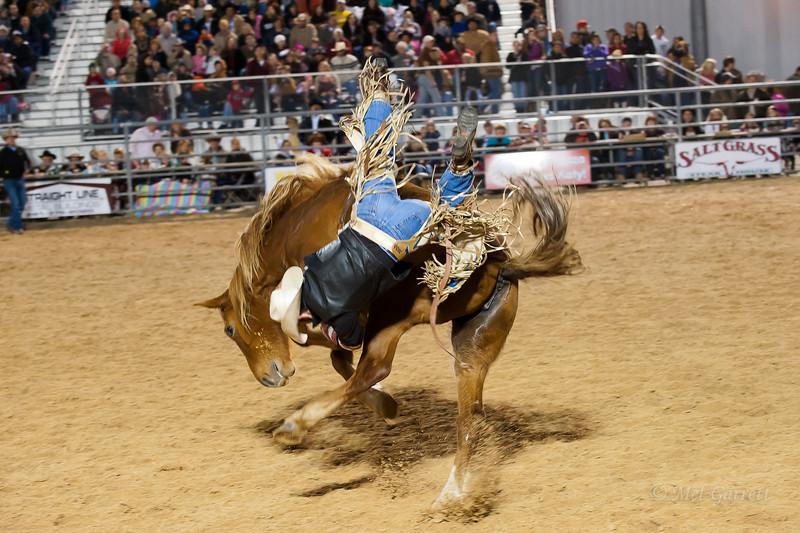 20120225-Katy_Rodeo_2-25-12_Sat-0071