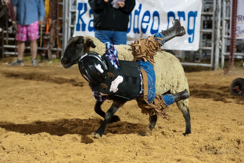20120225-Katy_Rodeo_2-25-12_Sat-0241