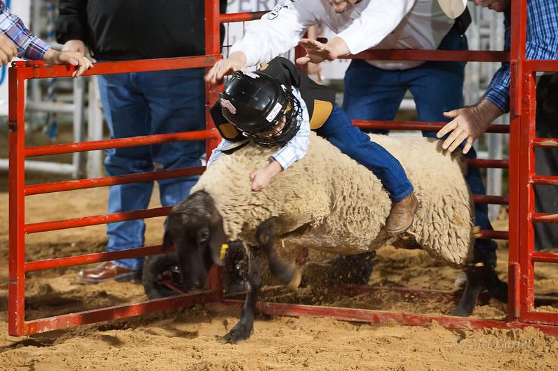 20120225-Katy_Rodeo_2-25-12_Sat-0275