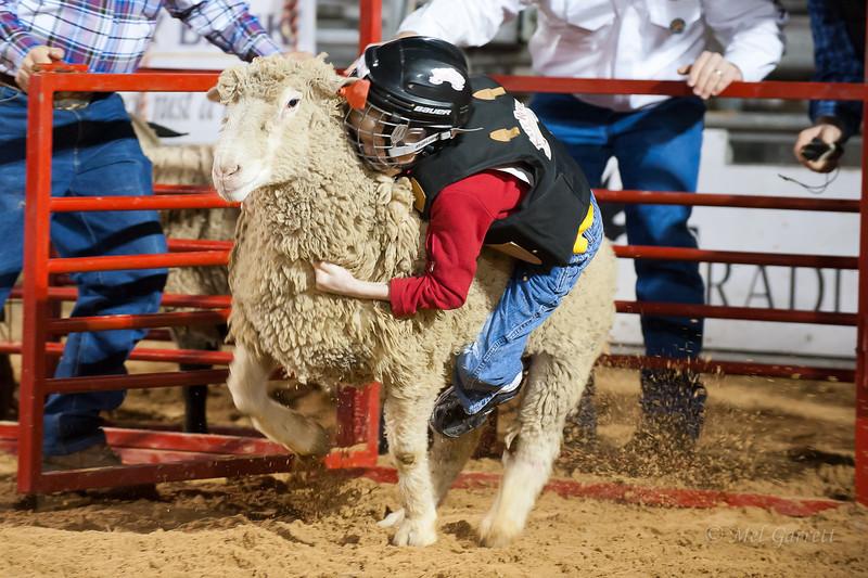 20120225-Katy_Rodeo_2-25-12_Sat-0402