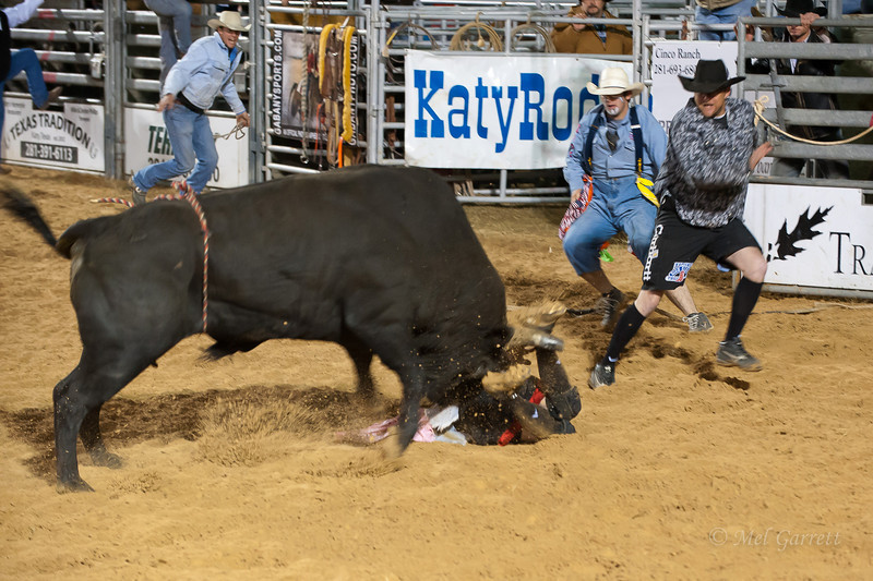 20120225-Katy_Rodeo_2-25-12_Sat-0436