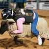 20120225-Katy_Rodeo_2-25-12_Sat-0289