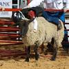 20120225-Katy_Rodeo_2-25-12_Sat-0267
