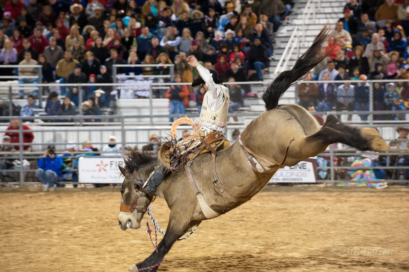 20120225-Katy_Rodeo_2-25-12_Sat-0350