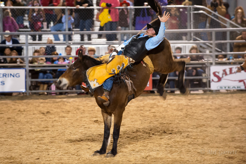 20120225-Katy_Rodeo_2-25-12_Sat-0038