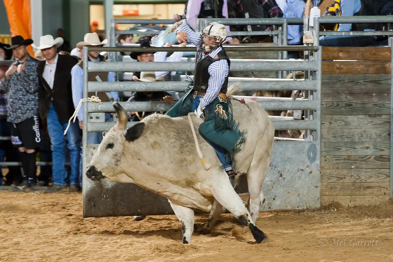 20120225-Katy_Rodeo_2-25-12_Sat-0415