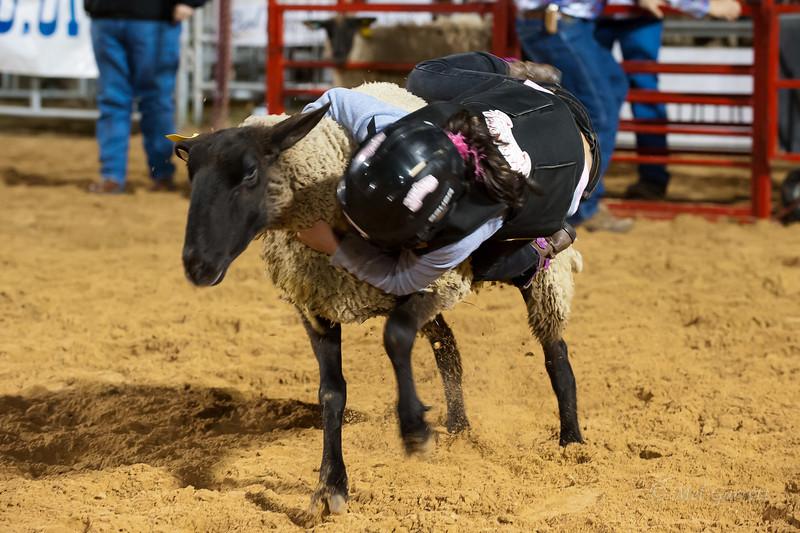 20120225-Katy_Rodeo_2-25-12_Sat-0262