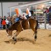 20120225-Katy_Rodeo_2-25-12_Sat-0055