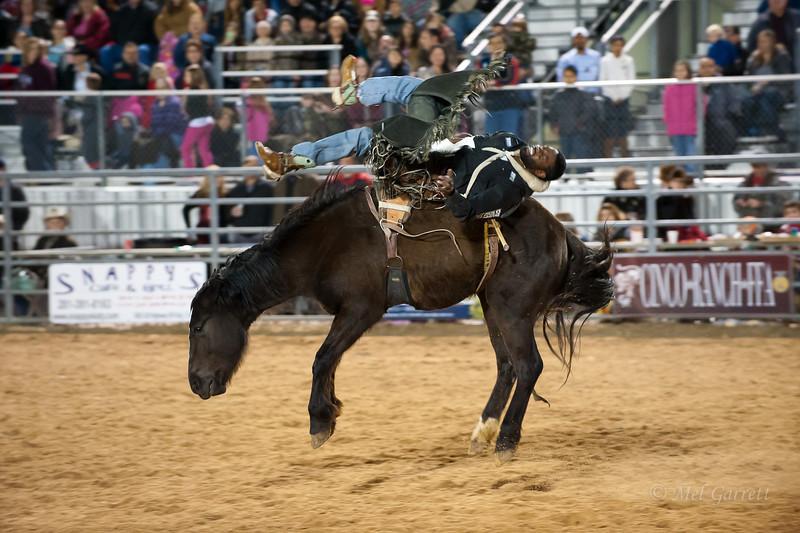 20120225-Katy_Rodeo_2-25-12_Sat-0034