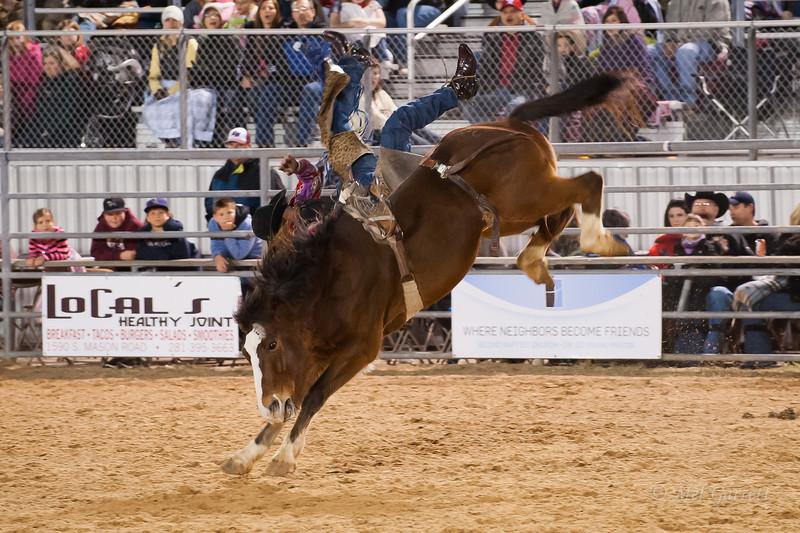 20120225-Katy_Rodeo_2-25-12_Sat-0067