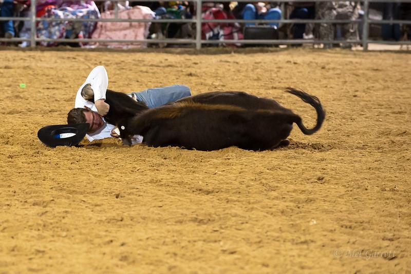20120225-Katy_Rodeo_2-25-12_Sat-0112