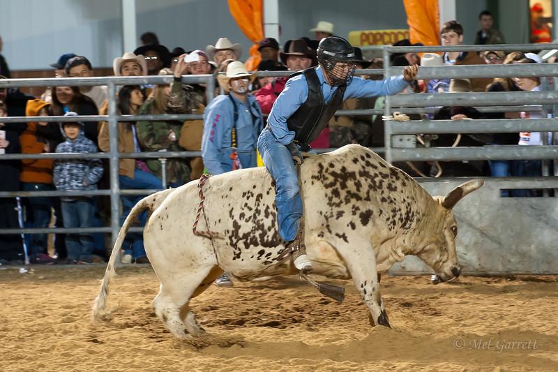 20120225-Katy_Rodeo_2-25-12_Sat-0420