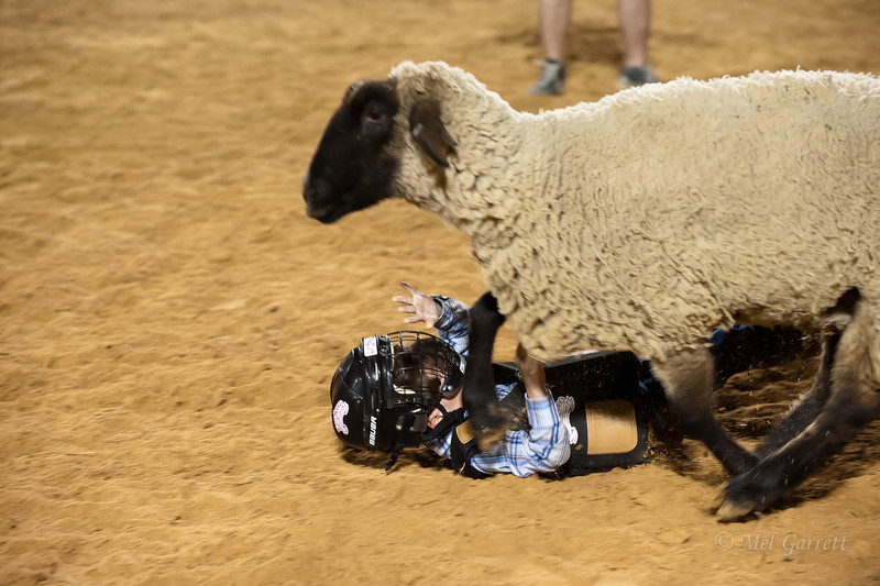 20120225-Katy_Rodeo_2-25-12_Sat-0285