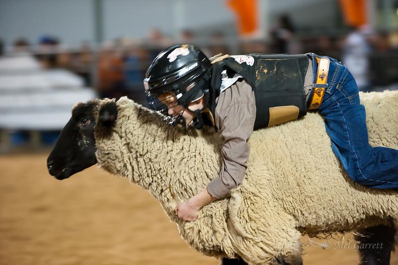 20120225-Katy_Rodeo_2-25-12_Sat-0394