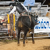 20120225-Katy_Rodeo_2-25-12_Sat-0630