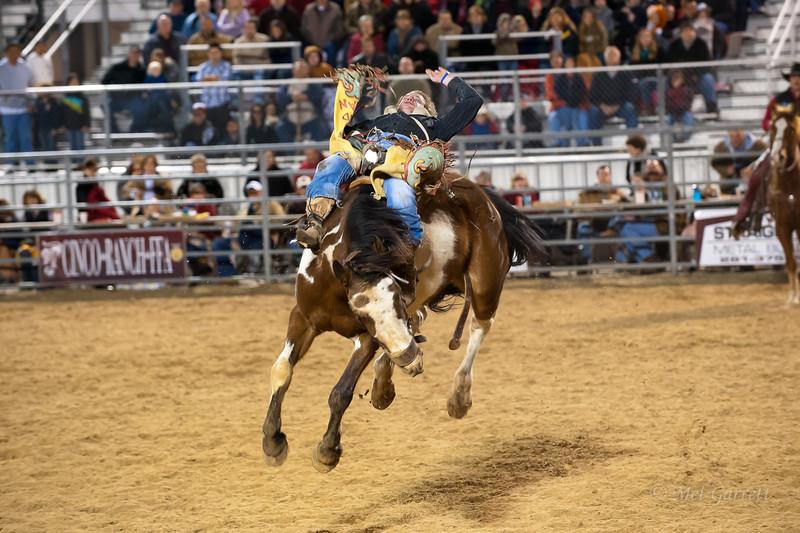20120225-Katy_Rodeo_2-25-12_Sat-0094