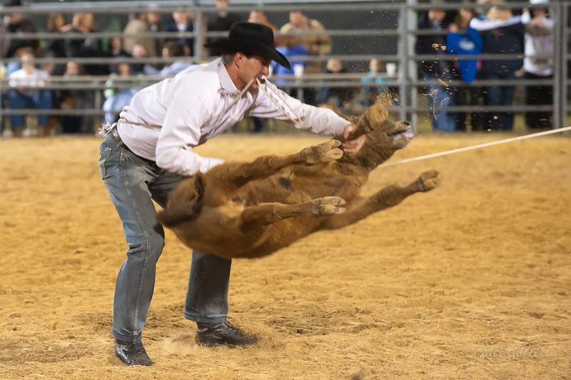 20120225-Katy_Rodeo_2-25-12_Sat-0337