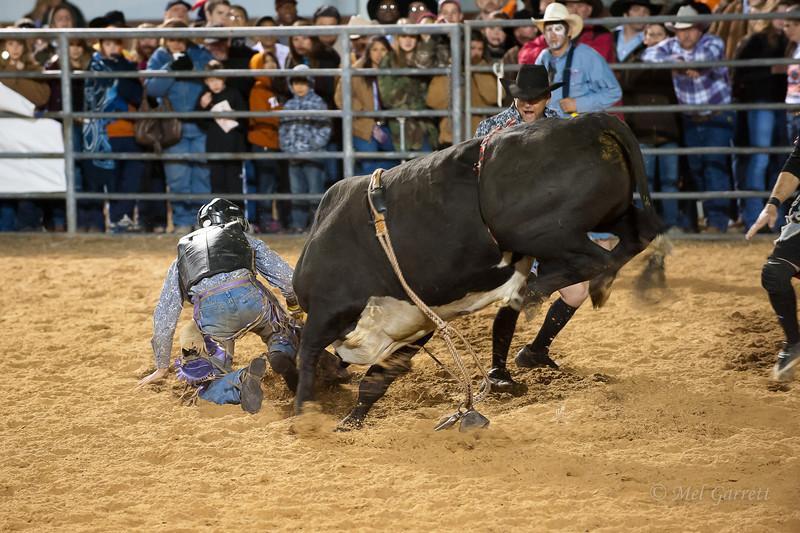 20120225-Katy_Rodeo_2-25-12_Sat-0429