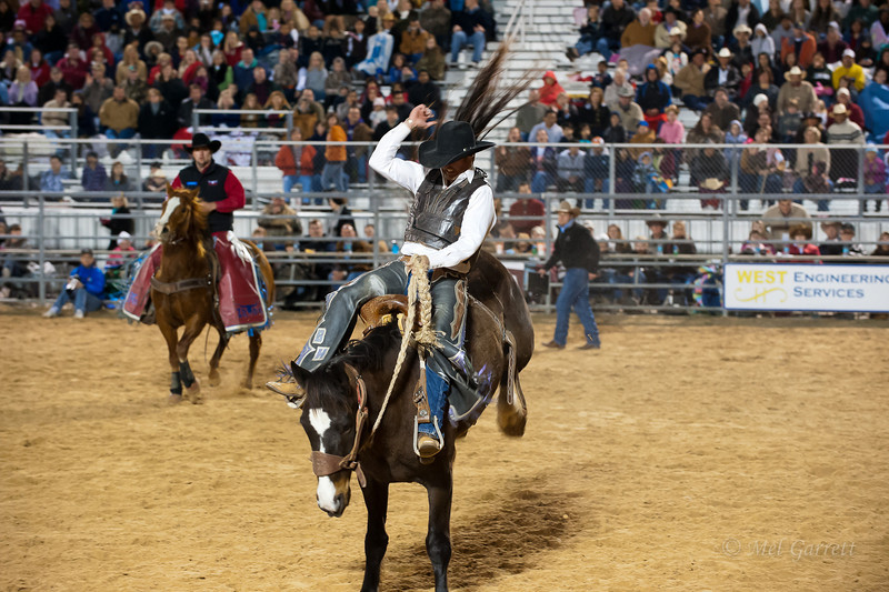 20120225-Katy_Rodeo_2-25-12_Sat-0368