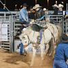 20120225-Katy_Rodeo_2-25-12_Sat-0369