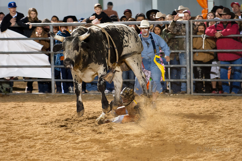 20120225-Katy_Rodeo_2-25-12_Sat-0447