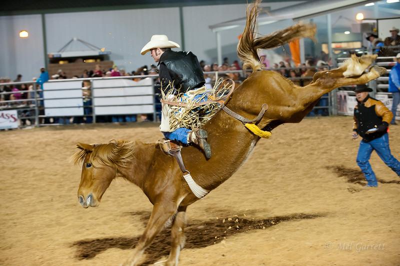 20120225-Katy_Rodeo_2-25-12_Sat-0070