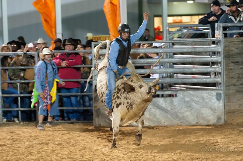 20120225-Katy_Rodeo_2-25-12_Sat-0419