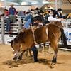 20120225-Katy_Rodeo_2-25-12_Sat-0054