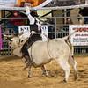 20120225-Katy_Rodeo_2-25-12_Sat-0622