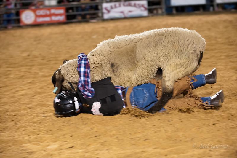 20120225-Katy_Rodeo_2-25-12_Sat-0243