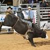 20120225-Katy_Rodeo_2-25-12_Sat-0631