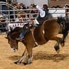 20120225-Katy_Rodeo_2-25-12_Sat-0056