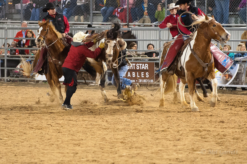 20120225-Katy_Rodeo_2-25-12_Sat-0105